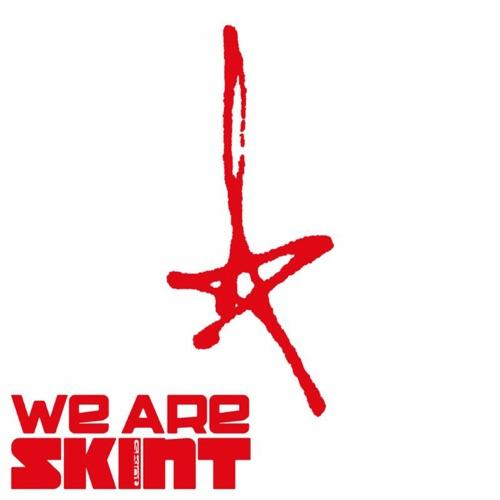 V.A. - WE ARE SKINT